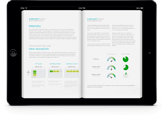 Ebook image on iPad